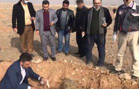 اشتغال زندانیان در طرح جنگل کاری مراتع شهرستان کاشان