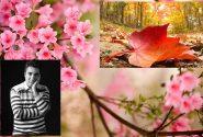 ذکر خیری از پاییز در بهار*